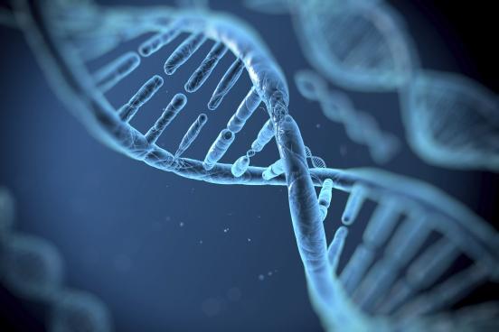 dna-genes-1405932776.jpg