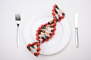 GMO-food-on-plate-300x199.jpg
